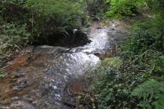 8. Weir ownstream from ROW Bridge 4641