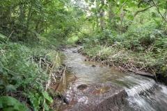 9. Weir ownstream from ROW Bridge 4641